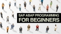 SAP ABAP