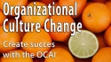 Organizational Culture Change: Create Success with