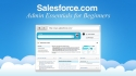 Salesforce.com Admin Essentials for
