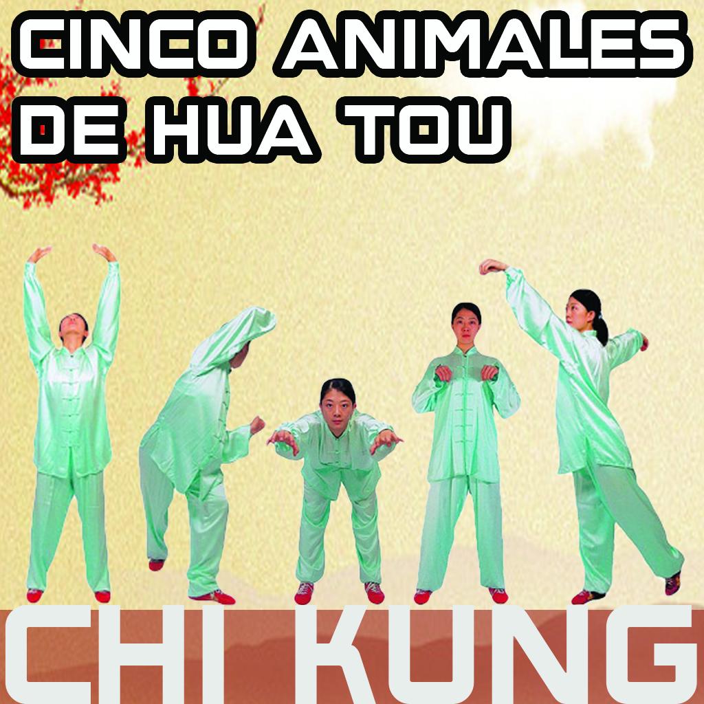 CHIKUNG DE LOS 5 ANIMALES DE HUA TOU